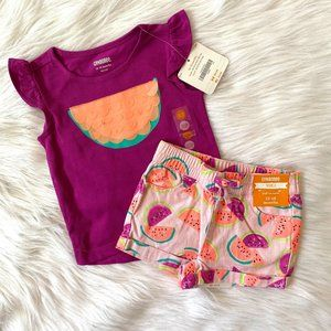 Gymboree Girls Purple Watermelon Shorts Set 12/18M